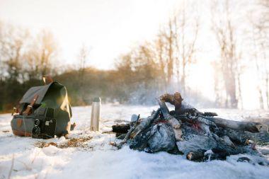 Bonfire on winter day in wood