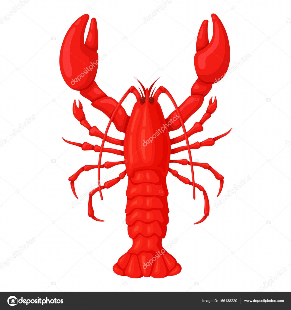 Red Whole Lobster Stock Vector Axsimen 166138220