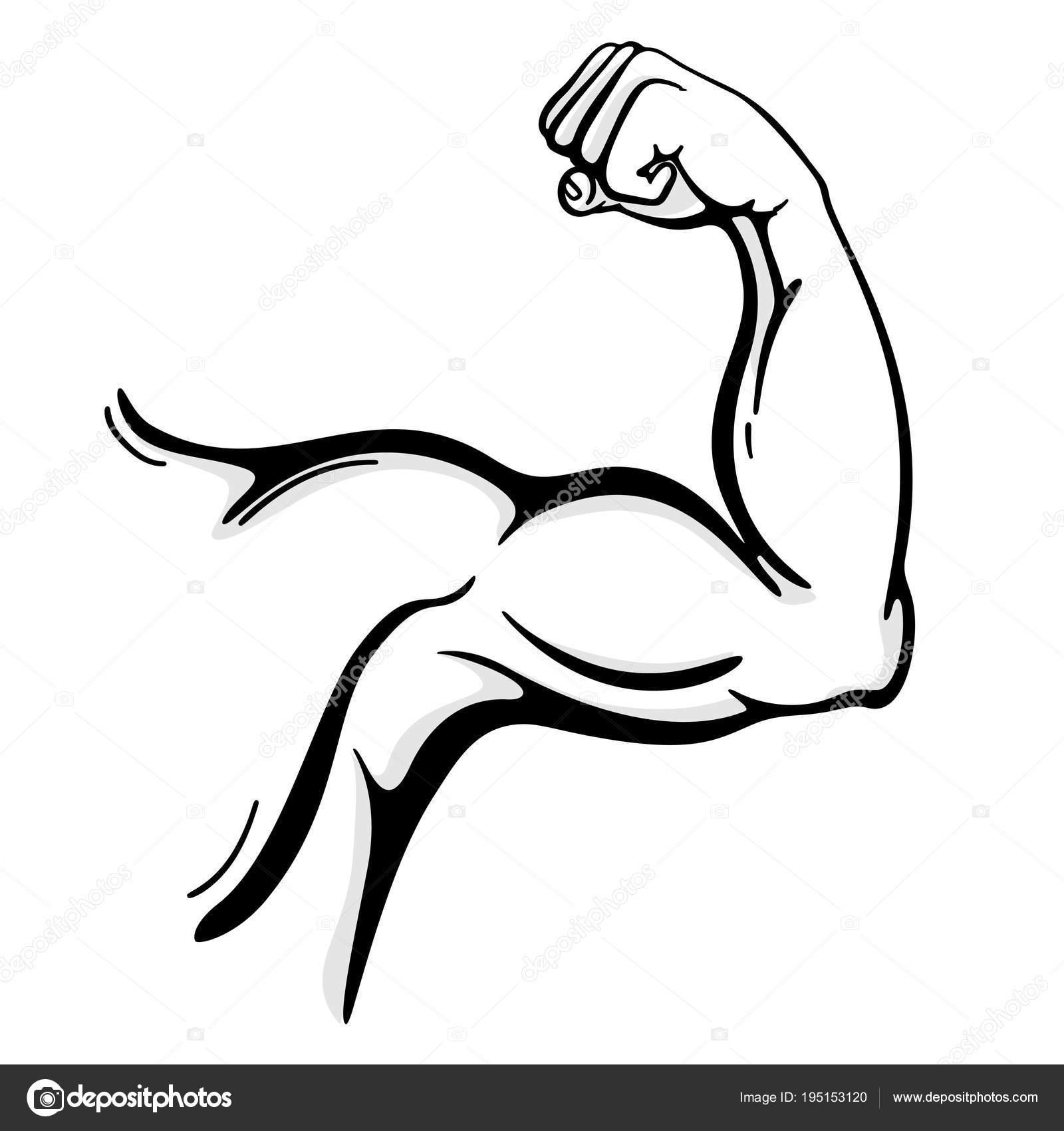 Dessin au trait bras muscle — Image vectorielle Axsimen ©  195153120 310e795f887
