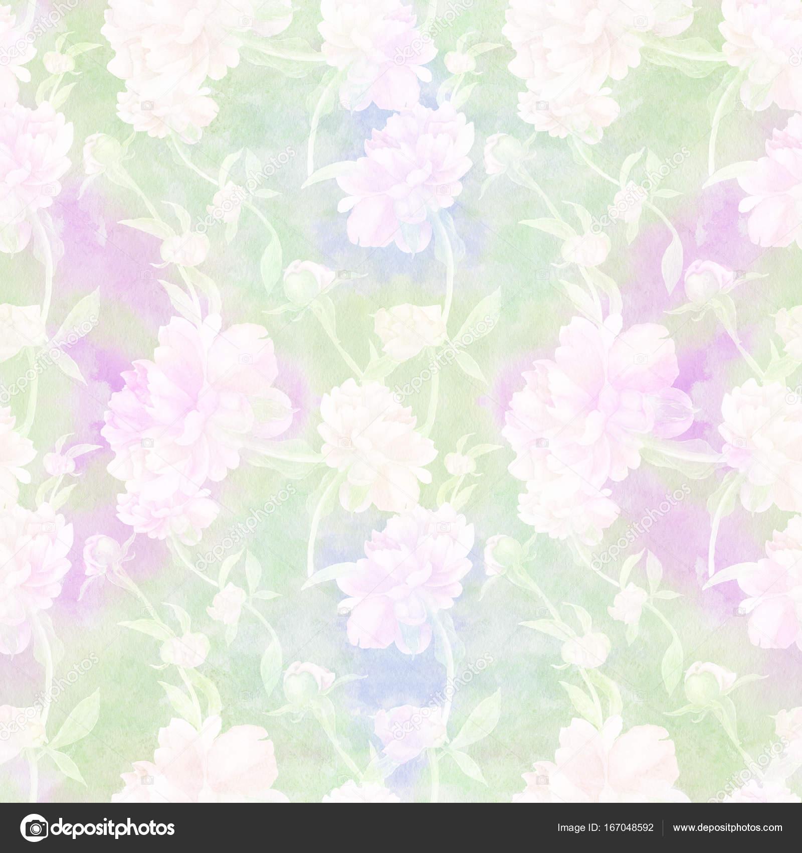 Peonias son flores y brotes. Acuarela. De patrones sin fisuras ...