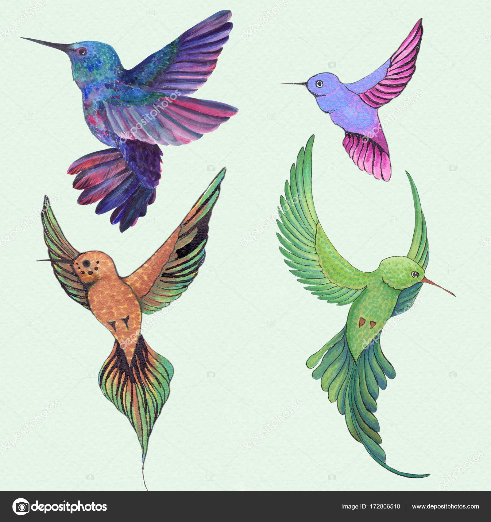 Birds Of Hummingbirds Drawing With Watercolor Wallpaper Isolated