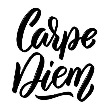 Carpe diem. Hand drawn lettering isolated on white background.