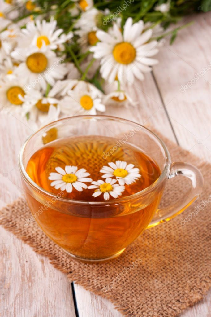Herbal tea with fresh chamomile flowers on white wooden background