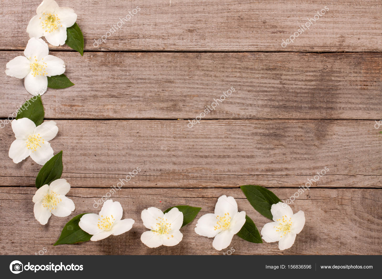 Frame Jasmine Flowers On The Old Wooden Background With Copy Space