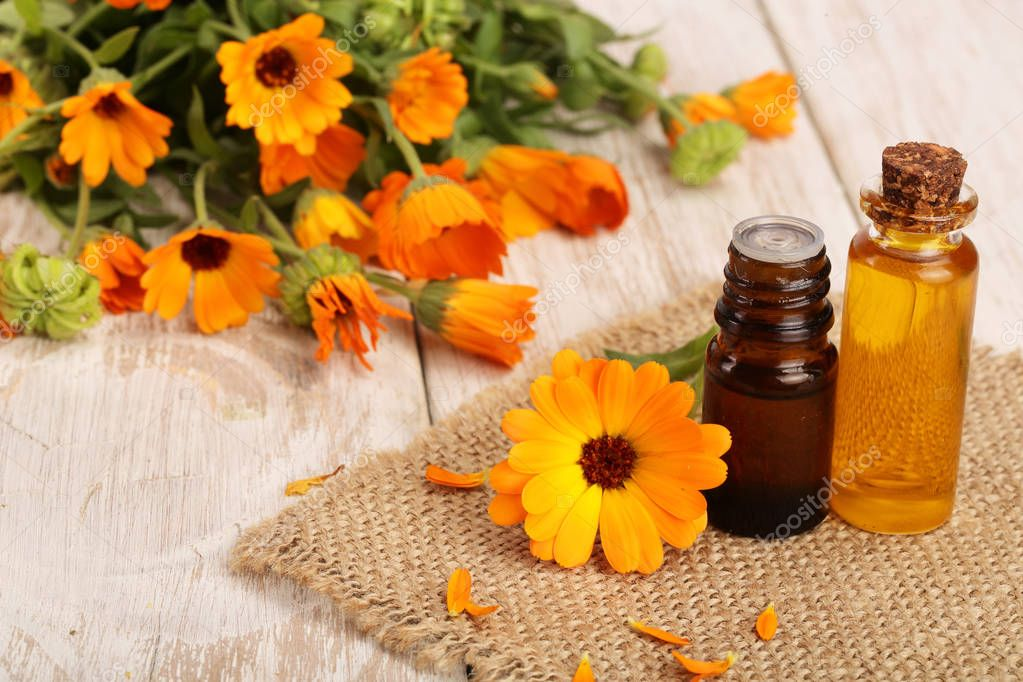 aromatherapy essential oil with fresh marigold flowers on white wooden background. Calendula oil