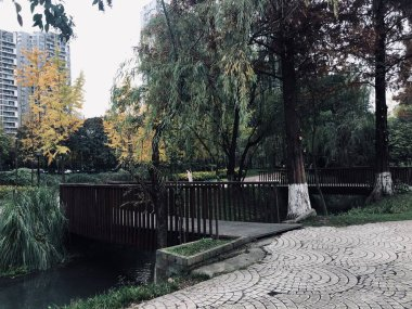 beautiful view of the park