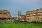 Starodávné ruiny hradu v provincii Lvov Ukrajina