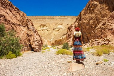 travel life style landscape picture of woman in long dress enjoy by beautiful south Judean desert scenic view in Israel dry rocky canyon pass gorgeous environment