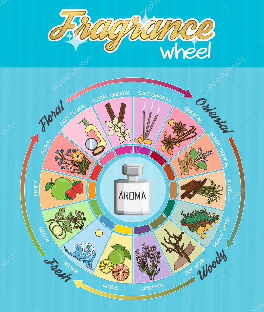Aroma fragrance guide wheel infographic poster.