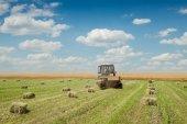 Traktor na farmě pole shromažďuje suché seno
