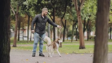 Man playing with his dog husky, teases her in park at the autumn day, slow motion