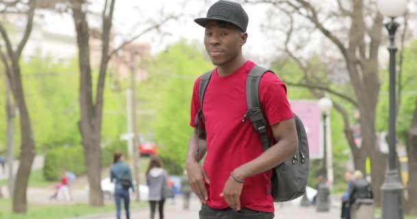 Američan Afričana muž portrét, student, usmívá se založenýma