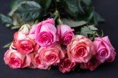 Fotografie Schöne rosa Rosen auf dunklem Hintergrund