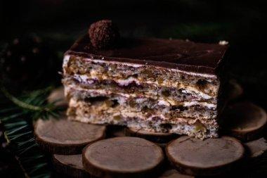 Tasty Christmas cake with chocolate glaze on dark wooden background with spruce decoration