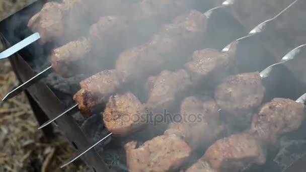 Vaření šíš kebab na jehle. Maso na grilu. Vaření vepřové maso na žhavého uhlí. Detailní záběr na tradiční piknik jídlo. Grilování masa na dřevo uhlí