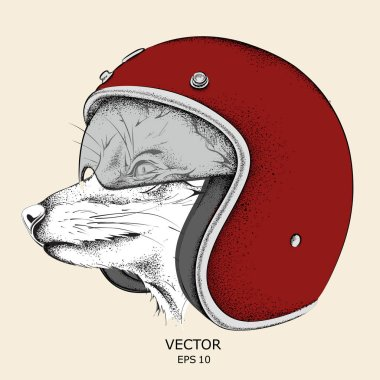 Fox in a motorcycle helmet. Vector illustration