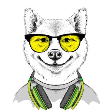 Dog in glasses and headphones. Vector illustration.