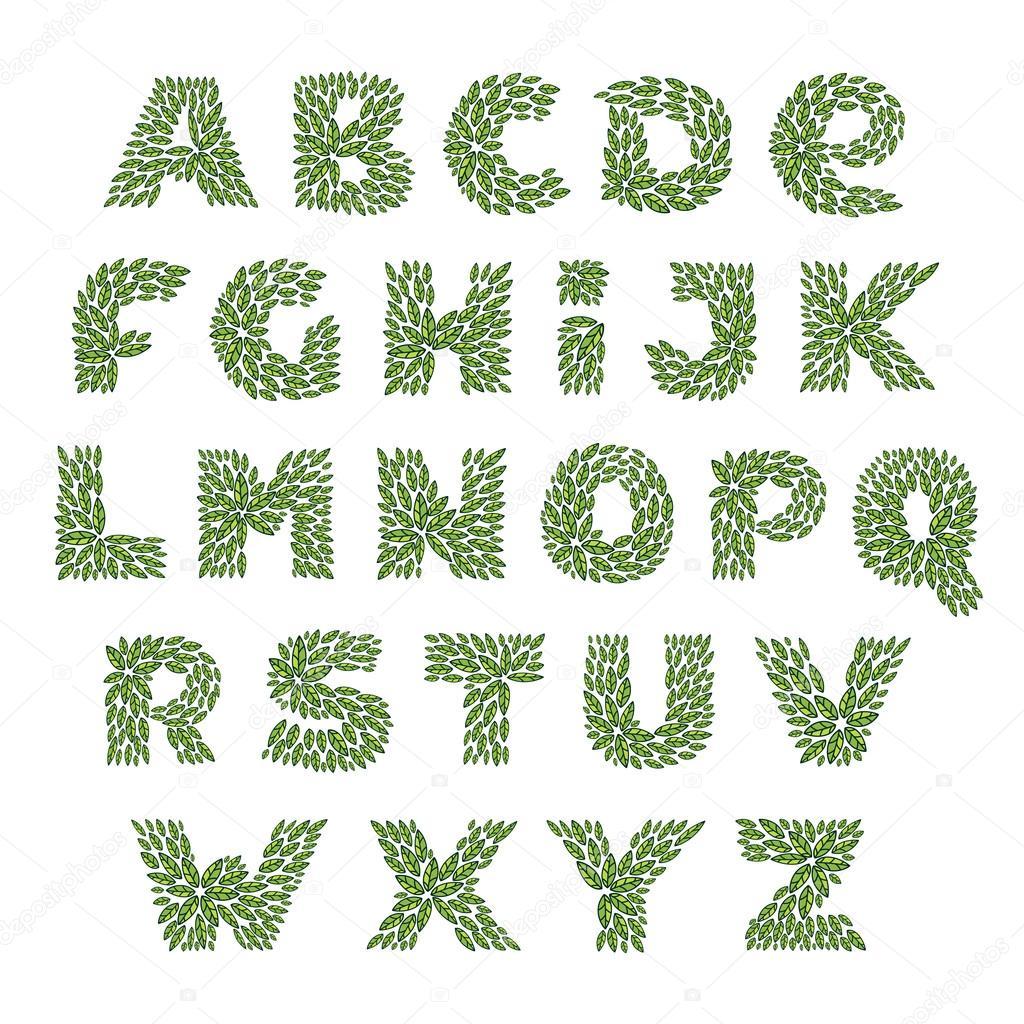 Alphabet logos formed by vintage pattern, line green leaves.