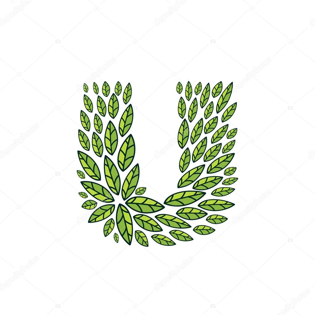 U letter logo formed by vintage pattern, line green leaves.
