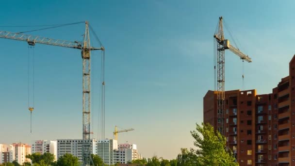 Four cranes in operation. Housing construction