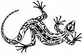 Eidechse - Zeichnung im ethnischen Stil. Handgezeichnete Illustration