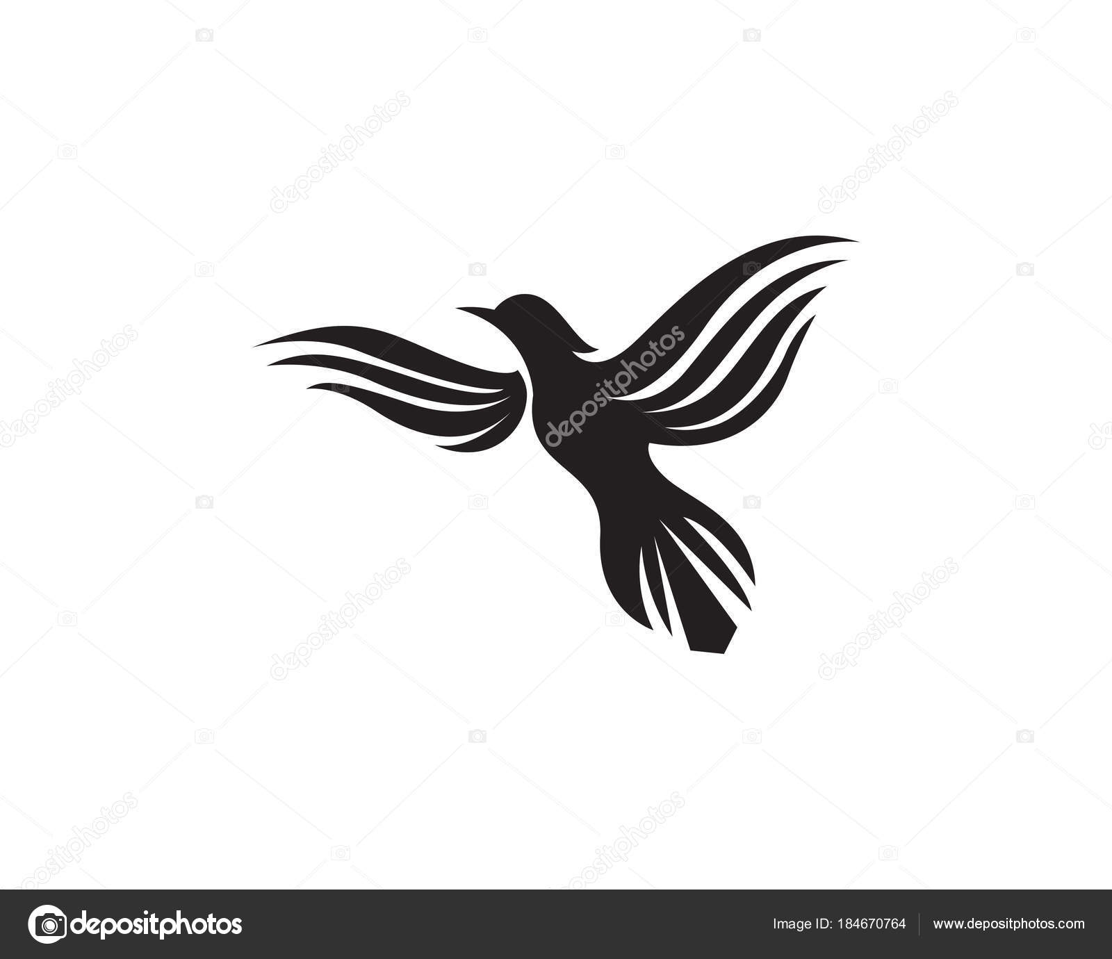 Wunderbar Vogel Kite Vorlage Bilder - Beispiel Business Lebenslauf ...