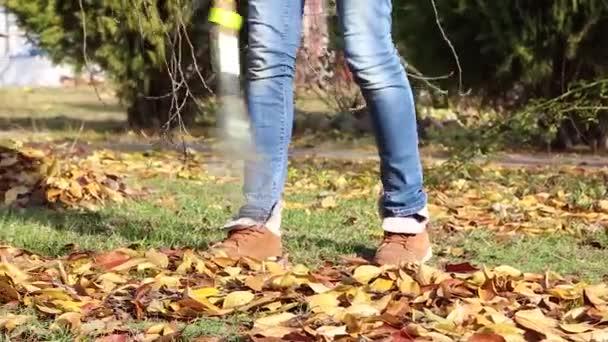 Padlé podzimní listy