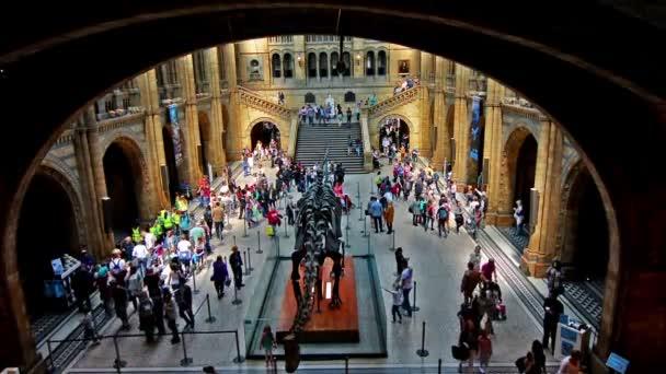 London. United Kingdom. April 2015. Visitors in Natural History Museum