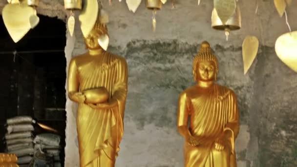 Dolly Camera Mozgalom között Buddha szobrok