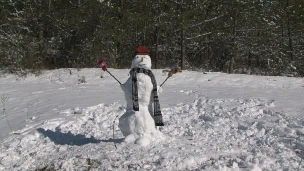 Snowman in a scarf and hat standing in the woods.