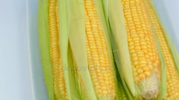 kukuřičné klasy se točí na tabulka v talíře