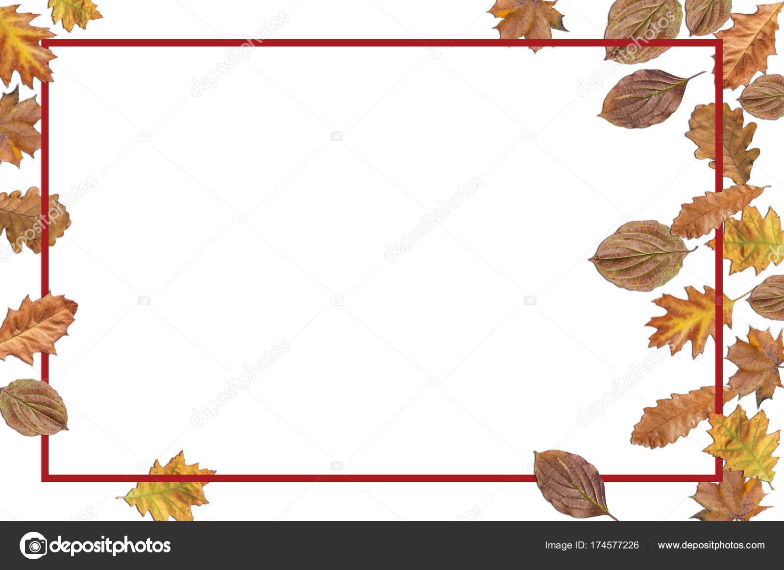 Marco bordo con el otoño las hojas de acción de gracias sobre fondo ...