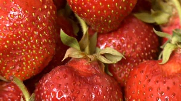 Čerstvé, zralé, šťavnaté jahody