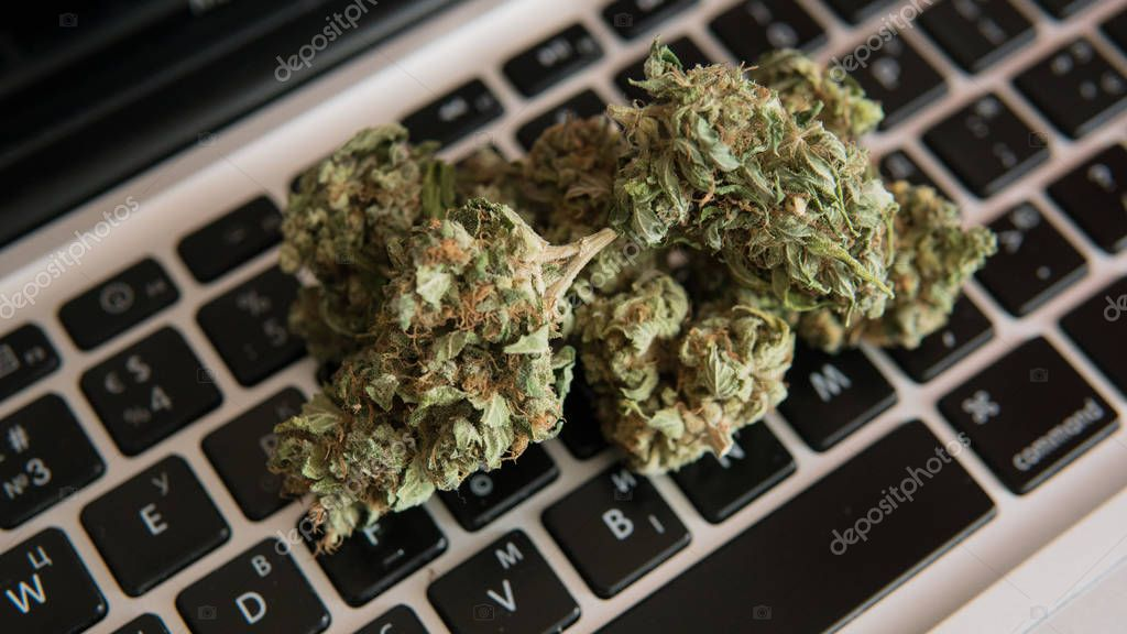 Buds of marijuana lying on the laptop keyboard. Drugs and creativity concept
