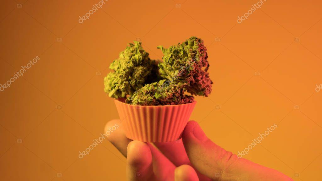 marijuana and smoking culture