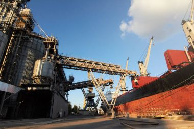 Big grain terminal at seaport. Cereals bulk transshipment from road transport to vessel. Loading grain crops on ship from large elevators at the berth. Transrportation of agricultural products.