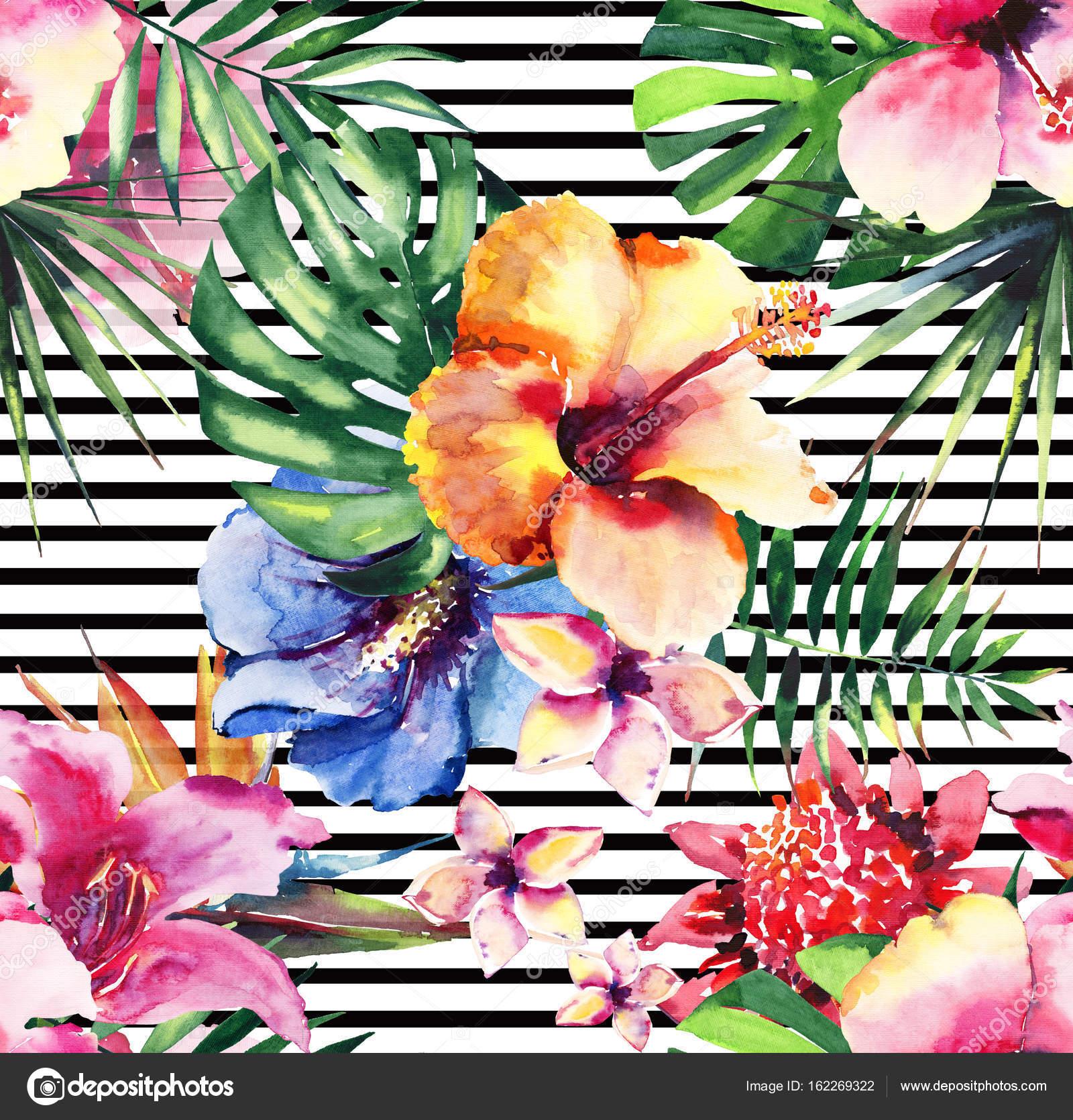 Helle schöne anspruchsvolle wunderbar zart bunten tropischen Hawaii ...