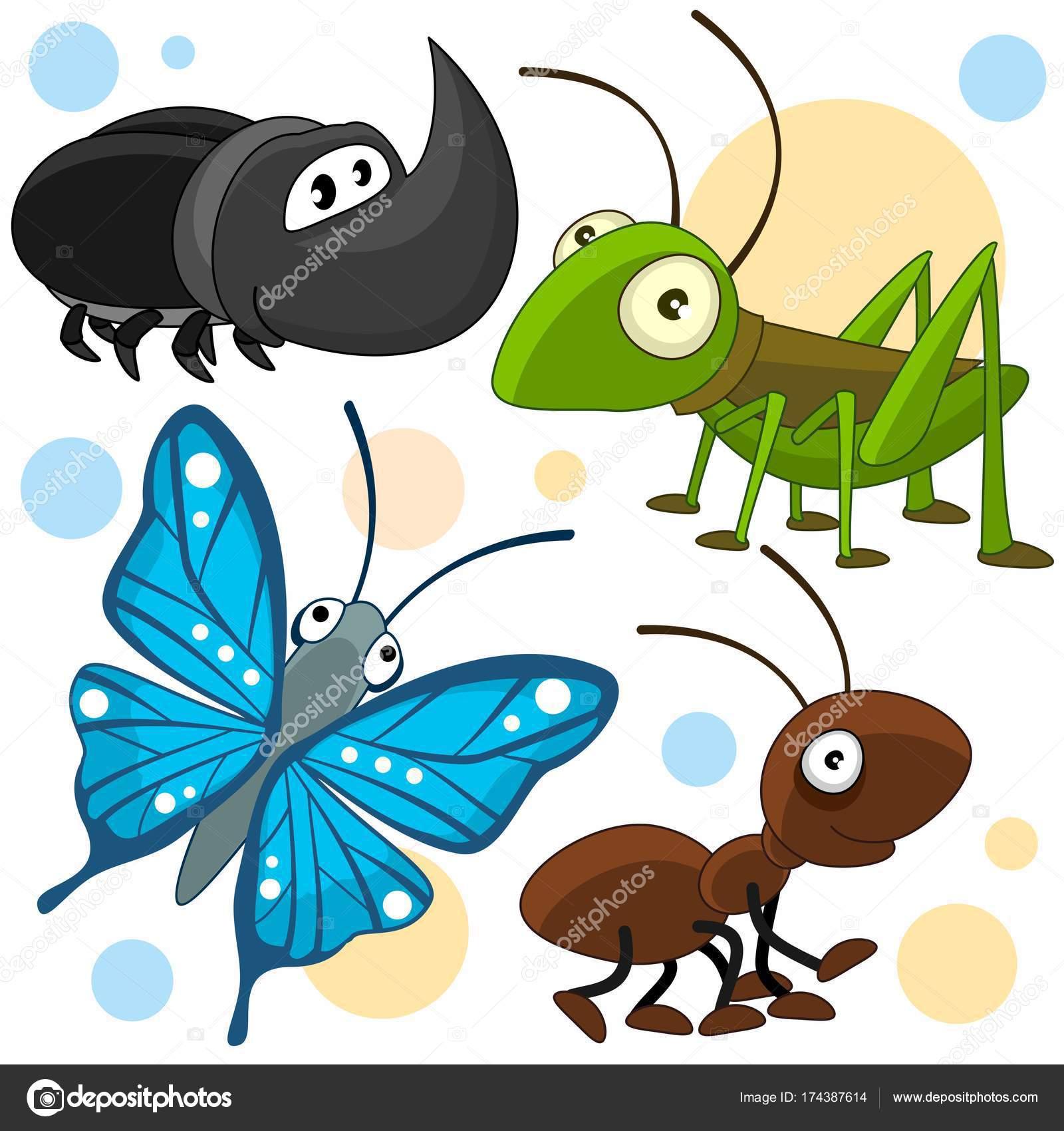Dibujos Insectos Infantiles Animales Parte 21 Vector De