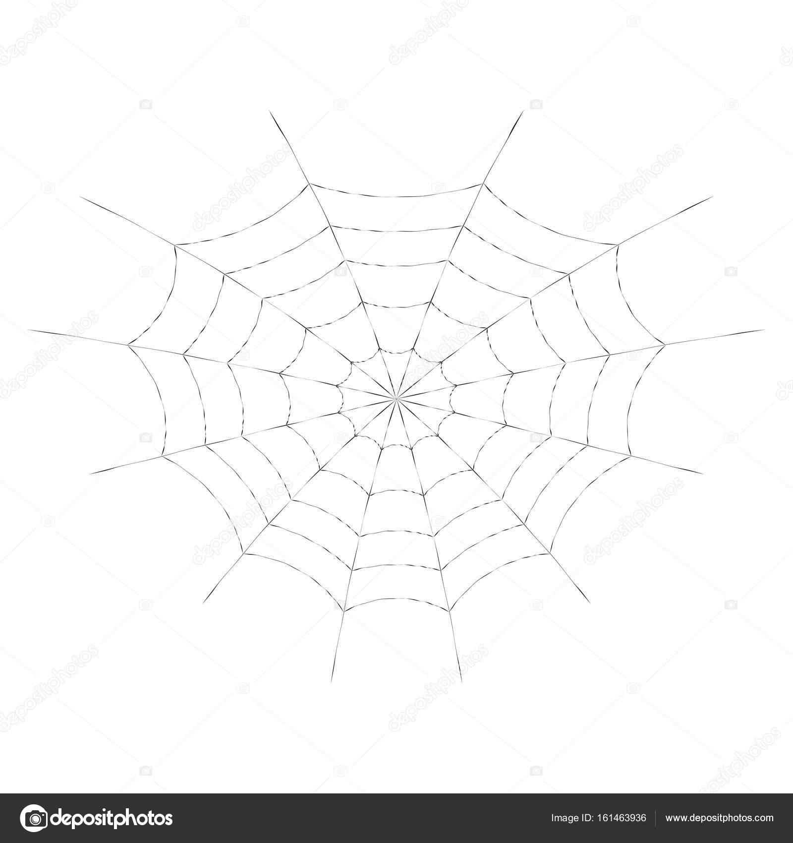 Tela de araña de vectores para Halloween diseño o t-shirt de ...