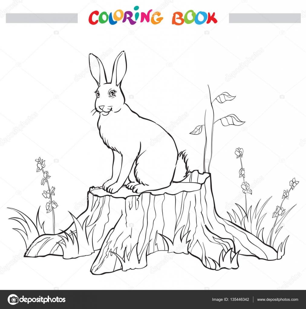 Güdük çiçek Ve çim Ile Tavşan Boyama Kitabı Stok Vektör