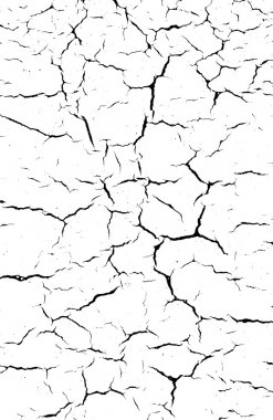 Black and white Cracked soil background