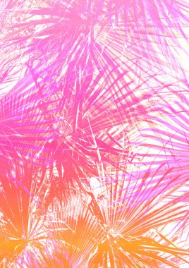 pink palm tree leaves pattern