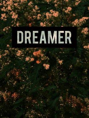 Dreamer inscription, quote