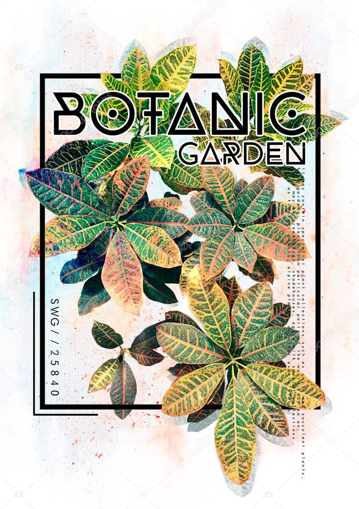 Botanic Garden Poster Card Stock Photo 169 Workingpens