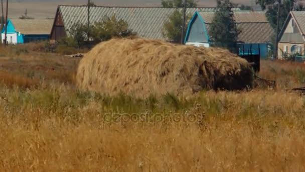 sena složen po sklizni na farmě