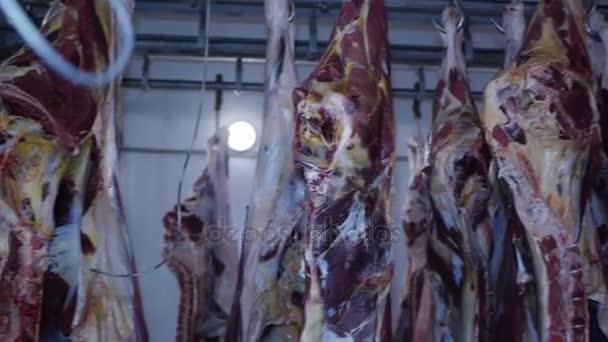 Carcass syrové maso hovězí maso vepřové zavěšené na háčky v mrazáku do výroby