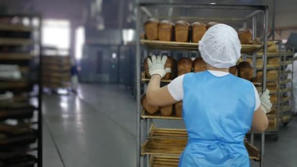 Kenyérsütés, a munkavállaló vesz kész friss kenyér eladó