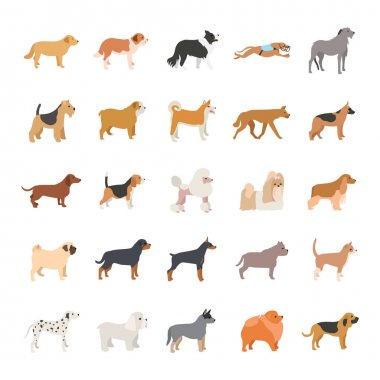 Dogs color vector icons