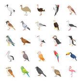 Fotografia Icone di vettore di colore degli uccelli