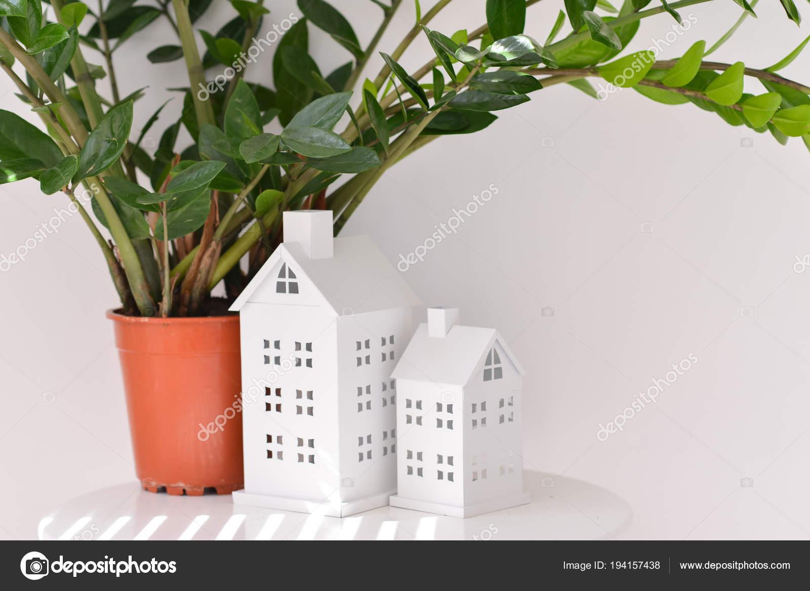 Intérieur Avec Support Et Plantes Sur Fond De Mur Blanc Près De